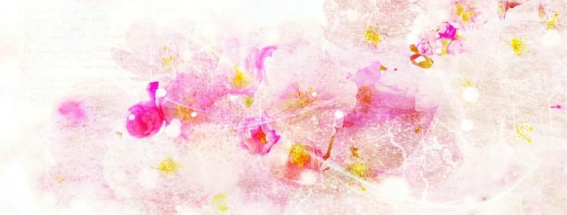 cherry-blossom-689521_960_720
